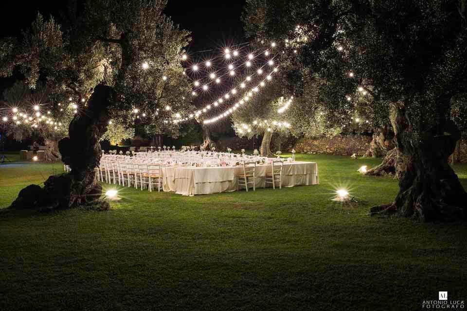 Matrimonio Tra Gli Ulivi Toscana : Tenuta monacelli lecce fra ulivi e storia domani mi